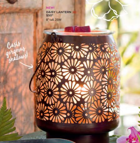 scentsy daisy lantern warmer 2017