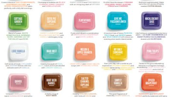 Scentsy Bring Back My Bar Nov 2020 Scentsy Bbmb Mandy S Scent Store