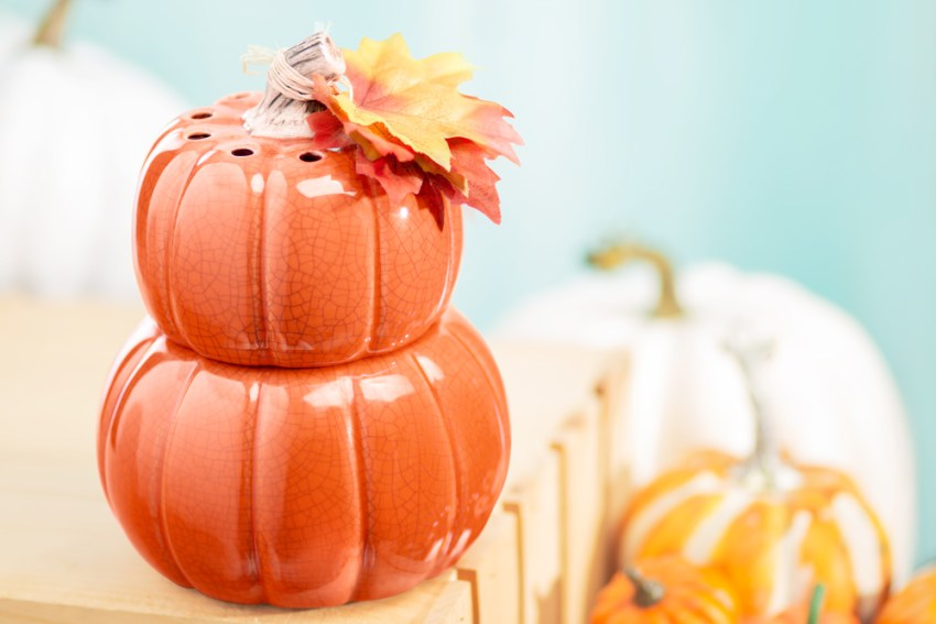 Photo of the the pick of the patch scentsy warmer