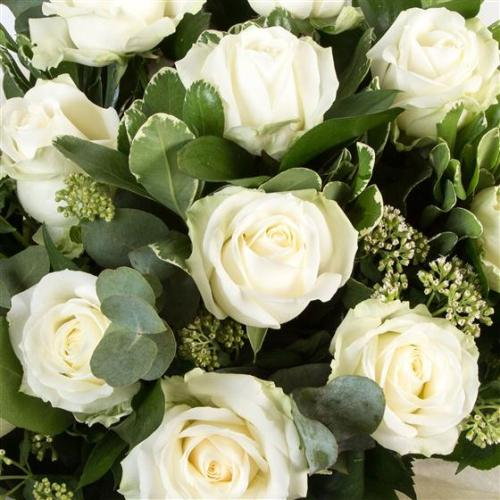 White Rose Hand Tied