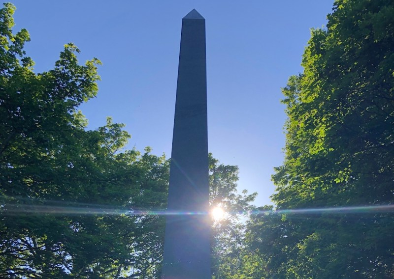 A beam of sunlight brightens a lockdown walk through Warriston Cemetery: photo Fay Young