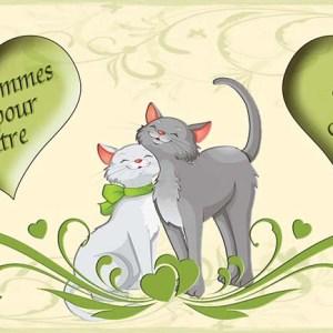 faire-part mariage chat amoureux