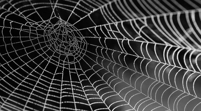 The Spider's Web, das Spinnennetz, das geheime Imperium