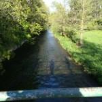 Maibaumsetzen in Ingersleben 2018 6 - Maibaumsetzen und Eisbach Challenge