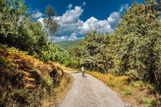 Den Jakobsweg per E-Bike entdecken