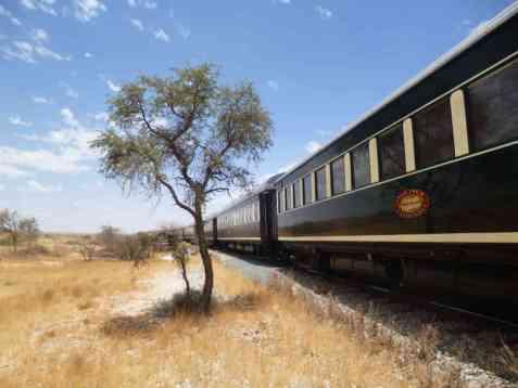 Juwel der Wüste - Im African Explorer von Namibia nach Kapstadt 2019