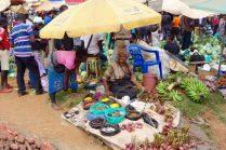 IMG 0009 - Jörg Scharff unterwegs in  Uganda und Tansania  (1.Teil)