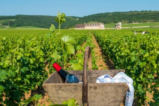 Das Burgund – Frankreichs Genussregion Nr. 1