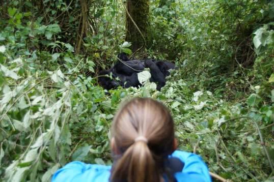 Abenteuer Uganda mit Lisa Heintzkill
