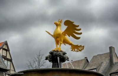 komischer Marktplatz-Vogel
