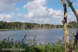 Der See Rörsöen wurde viele Jahre per Pumpe trocken gehalten - jetzt nicht mehr.