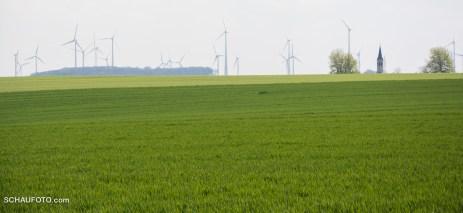 Possenhainer Kirchturm über Saatengrün an Windrädern