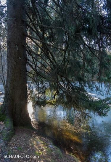 gefrorener Seifiger Teich
