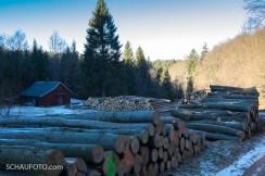 Das nenne ich Holz vor der Hütte haben!