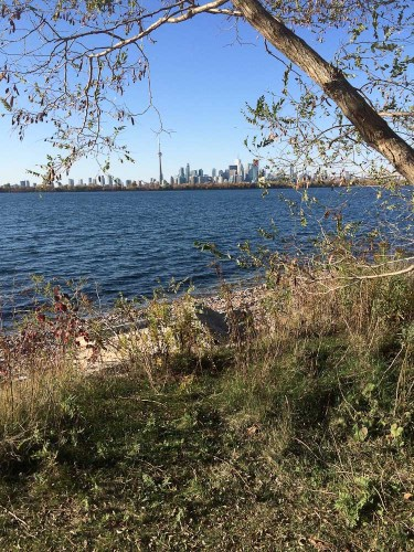 Tommy Thompson Park-19