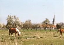 Dorfbilder Mai 1991021