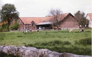 Dorfbilder Hof Loeser Mai 1991030