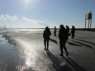 wandelaars-zandplaat-groot-buitenschoor