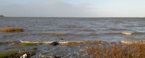 Het getij in de Westerschelde en Zeeschelde