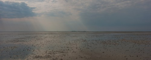 Waddenvereniging hijst rode vlag: mooiste natuurgebied van Nederland onder druk