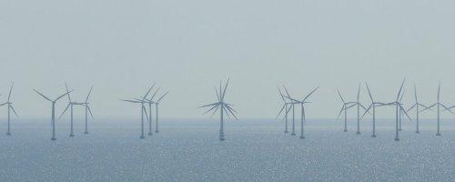 Nieuwste inzichten in de milieueffecten van windparken in het Belgisch deel van de Noordzee