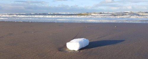 Paraffineblokken op Nederlandse stranden