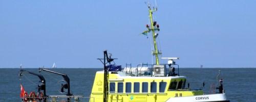 Geen boetes voor verstoren natuur in Waddenzee