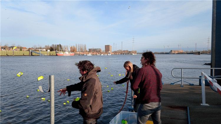 Wetenschappers gooien plastic in de Schelde