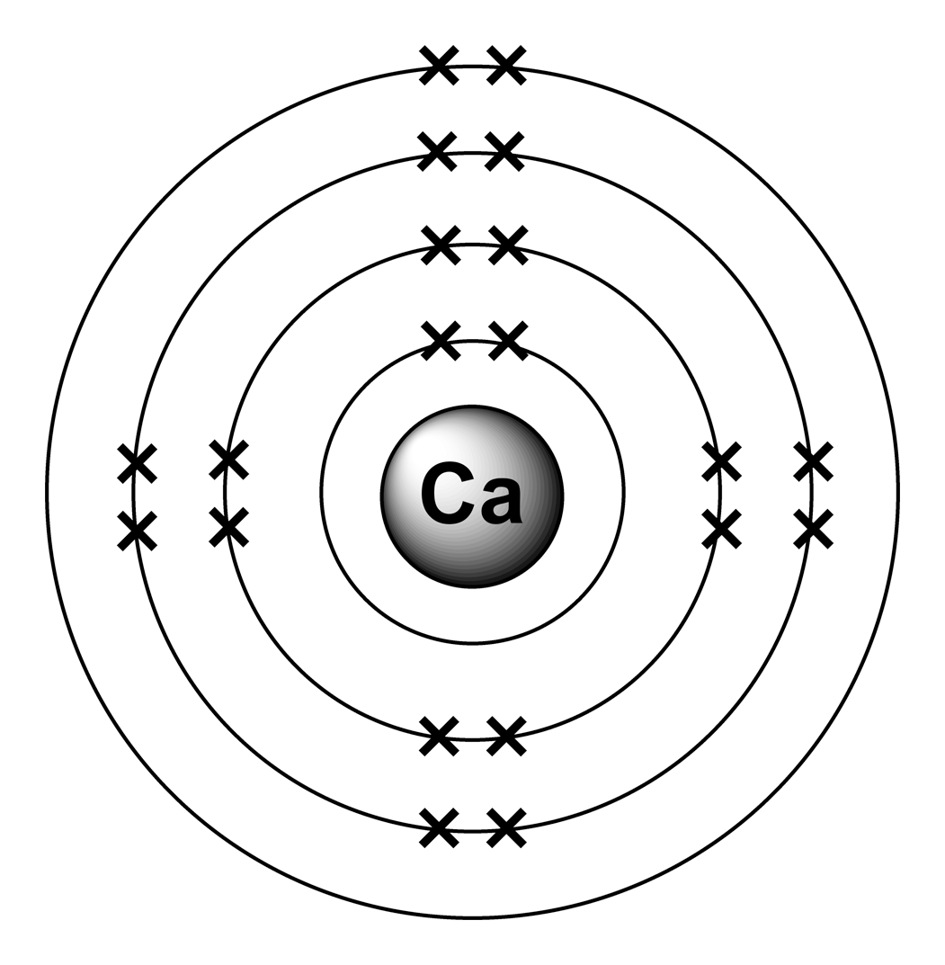 Bohr Diagram Of Calcium