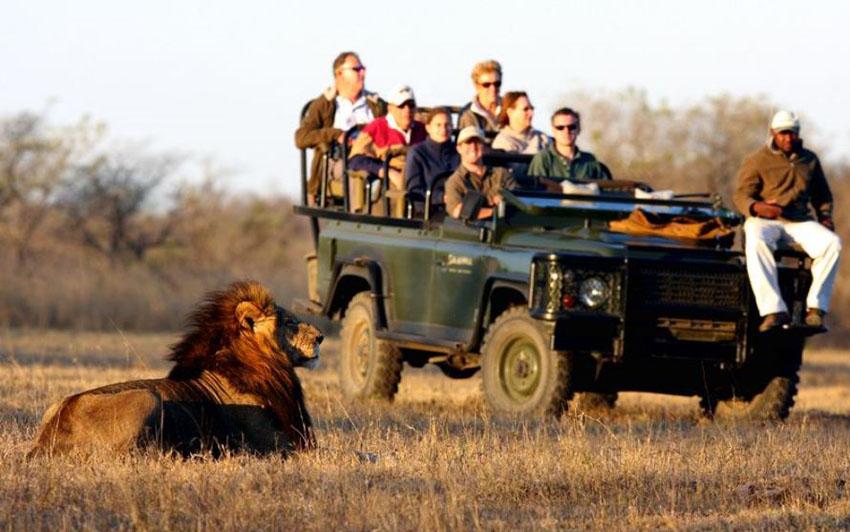 3 Day Safari Trip In South Africa Travel Tours Schengen Travel