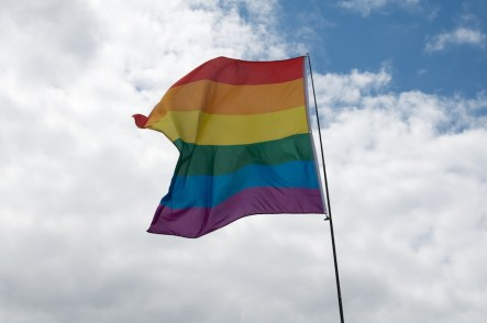 Flags for LGBT History Month 009