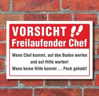 Moedel Lustige Schilder Vorsicht Freilaufender Chef