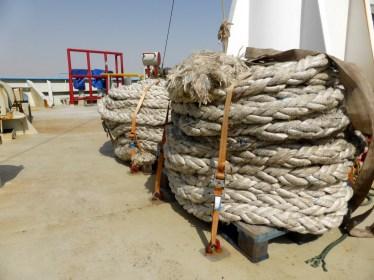 Suez - 00 (203)