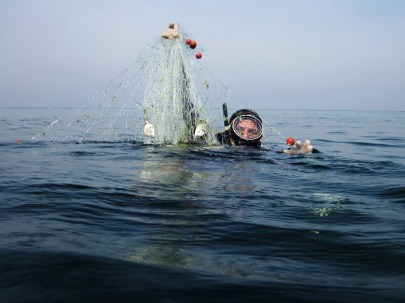 Getting the nets out of the sea after collecting fish email : hazem.gouda87@gmail.com mobile : 002_01005183284