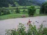 Pferdekoppel Granstein