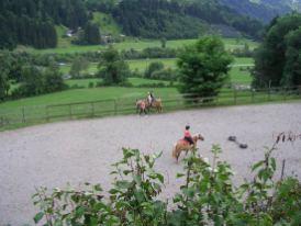 Unsere Pferdekoppel
