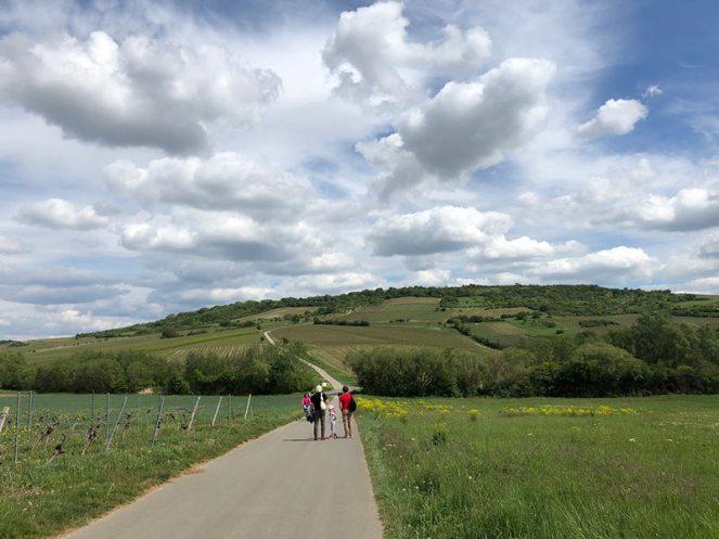 Via Vinea in Sprendlingen: Tolle Wanderung für die ganze Familie