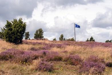 Wabelsberg mit Fahne