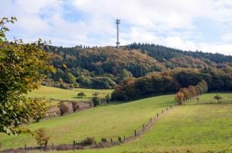 Waldseepfad Rieden (10)