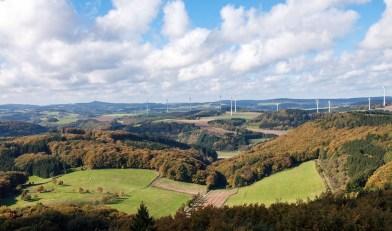 Waldseepfad Rieden (12)