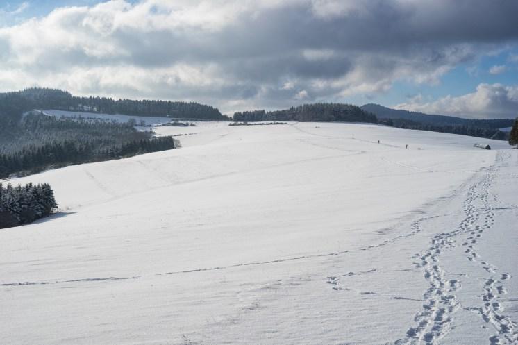 Traumpfad Bergheidenweg (29)