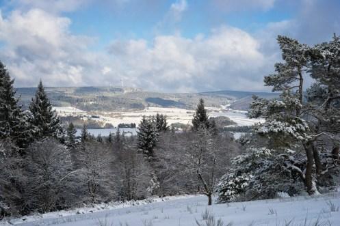 Traumpfad Bergheidenweg (3)