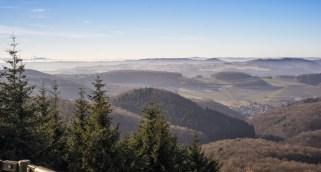 Ausblick vom Gänsehalsturm