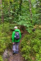 Naturschutzgebiet Schluchten und Moore im Furlbachtal (9)