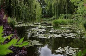 Parc de Claude Monet (19)