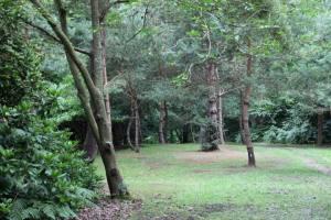 Parc des Moutiers (3)