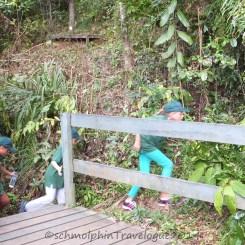 Shangri-La's Nature Reserve - Little Ranger