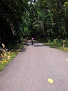 Pulau Ubin Cycling Path