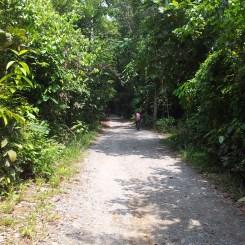 Pulau Ubin to Chek Jawa