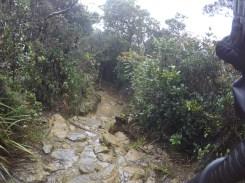 Climbing Mount Kinabalu Downhill Slopes